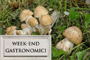 Week End Gastronomici