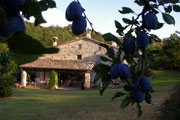 Bed and Breakfast (B&B) in Valmarecchia: dormire nell\'entroterra ...